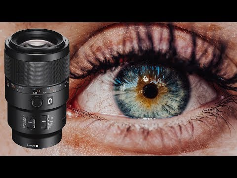 Sony 90mm f2.8 Macro Review: It Does It All