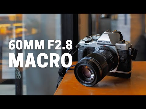 Is Olympus 60mm F2.8 The Best Macro Lens for Micro Four Thirds?