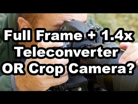 Crop Camera Or Full Frame Camera With A 1.4 Teleconverter?