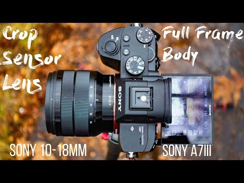 Sony A7III + 10-18mm f/4 - Better than you would think!