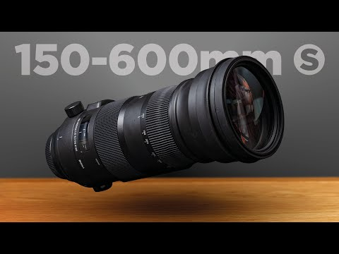 Sigma 150-600mm F/5-6.3 SPORT lens Review + sample images