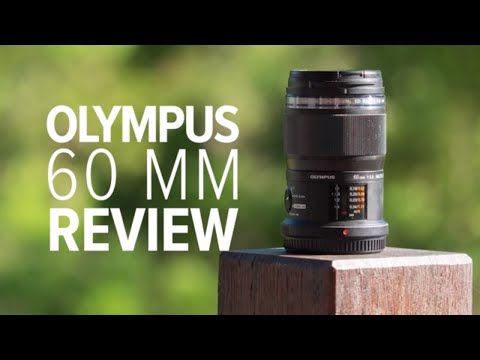 A macro photography review of the Olympus 60mm f/2.8 Macro Lens