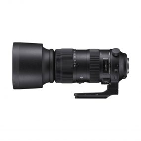 Sigma 60-600mm f/4.5-6.3 S DG OS HSM – Canon